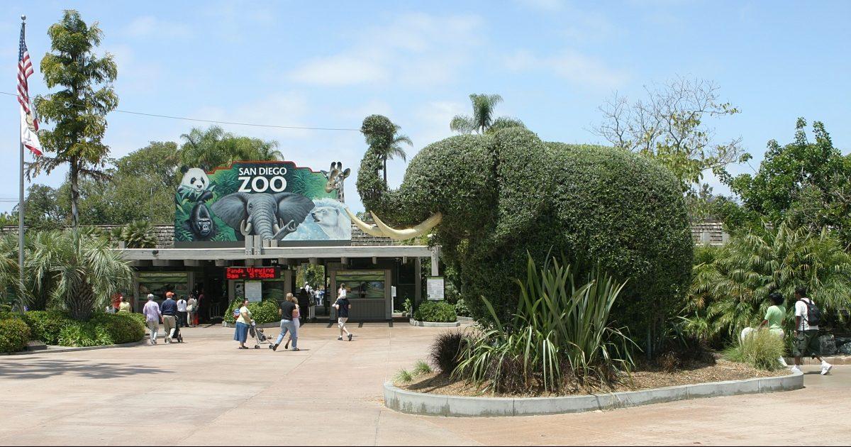 San Diego Zoo Membership Phone Number